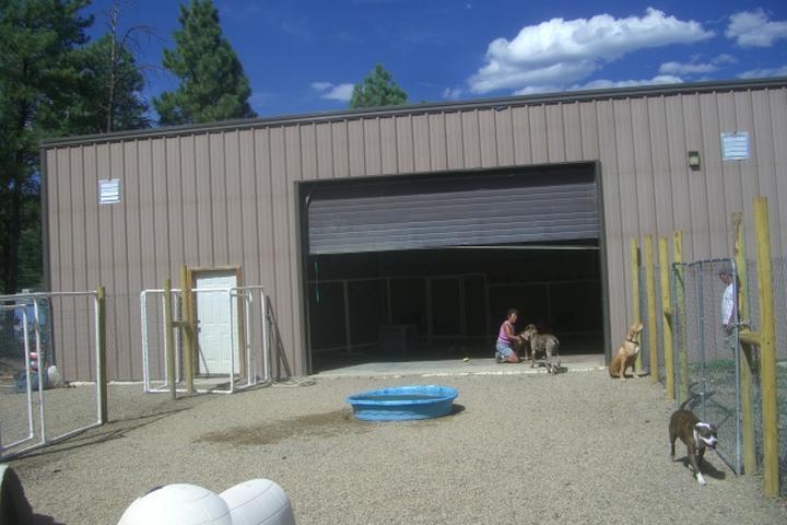 Pet Friendly Doggy Daycare 81147