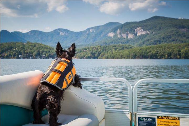 Pet Friendly Lake Lure Adventure Company