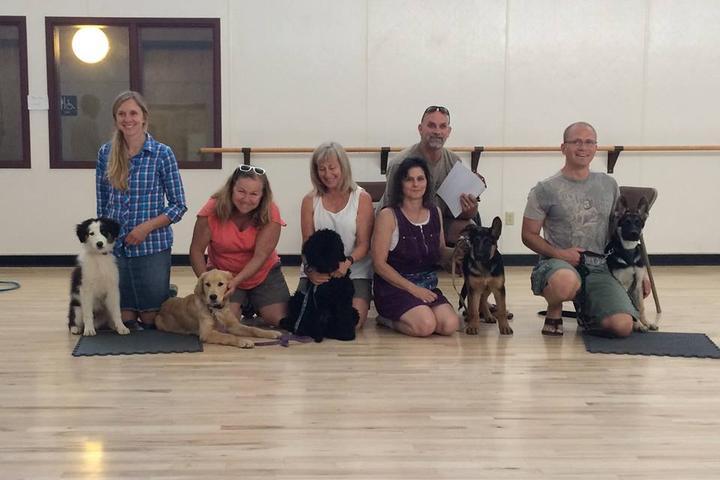 Pet Friendly Go Rogue Dog Training Center LLC