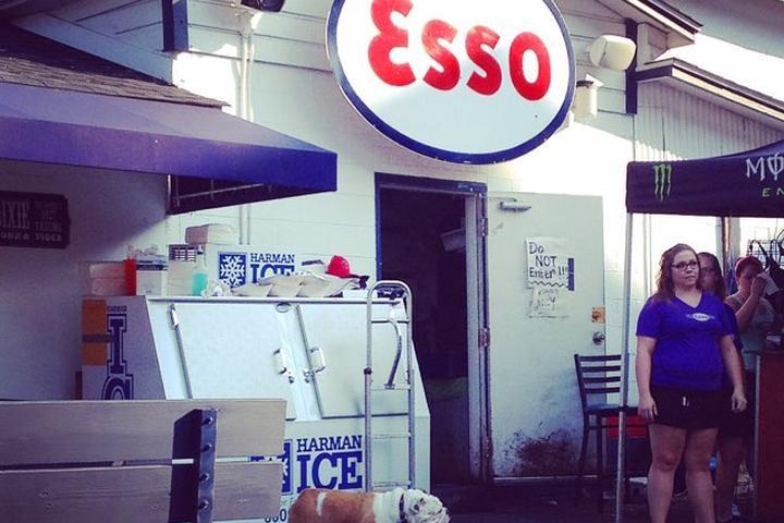 Pet Friendly The Esso Club
