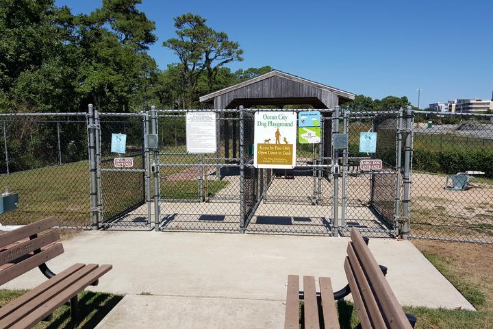 Pet Friendly Ocean City Dog Playground