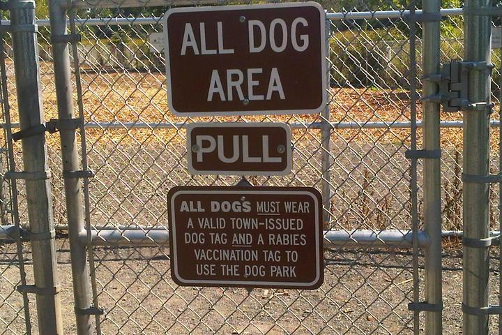 Pet Friendly Glastonbury Dog Park