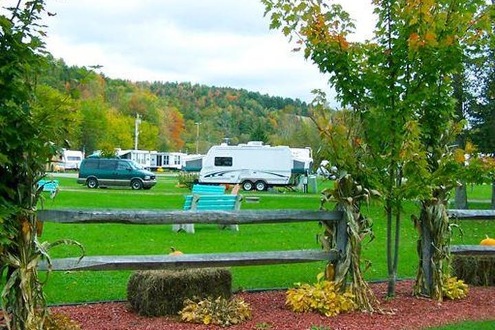 Pet Friendly Moose River Campground