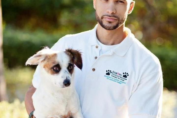 Pet Friendly DogApy Massage Therapy For Dogs