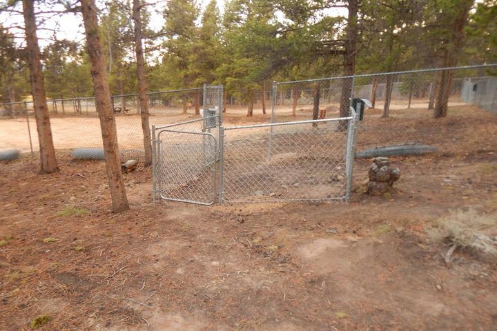 Pet Friendly Leadville Dog Park