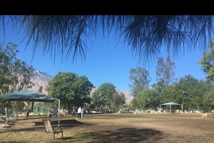 Pet Friendly Palm Springs Dog Park