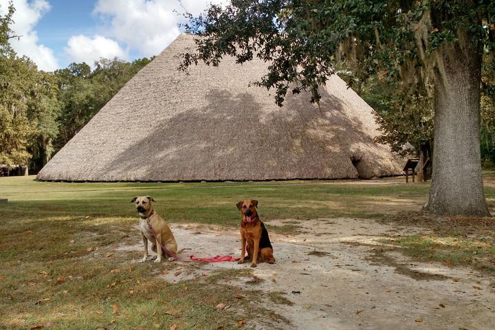 Pet Friendly Mission San Luis National Historic Landmark