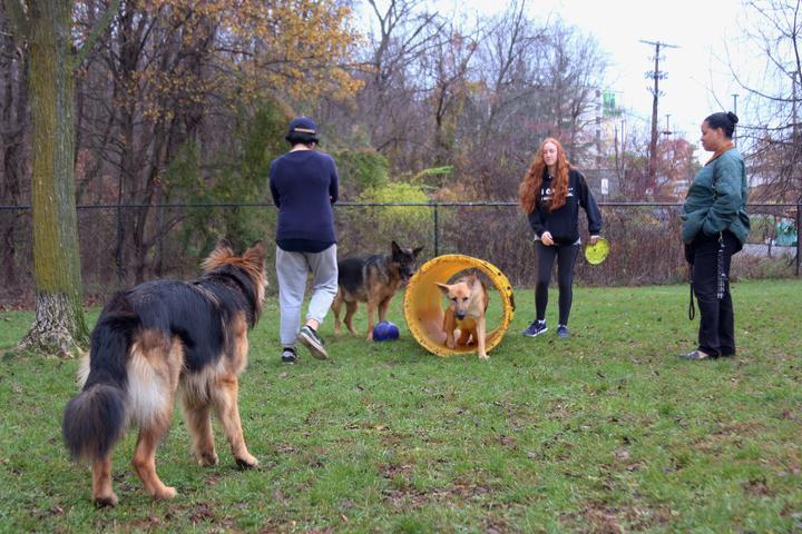Pet Friendly Greenbelt Dog Park