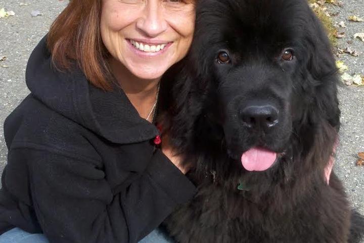 Pet Friendly TLC Dog Training