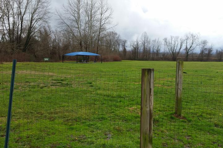 Pet Friendly Pet's Own Place Dog Park