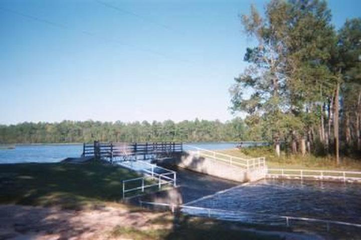 Pet Friendly Little Pee Dee Campground