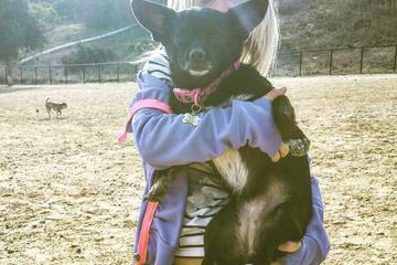 Pet Friendly Memorial Dog Park