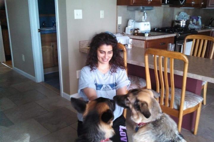 Pet Friendly Sam's Puppy Play