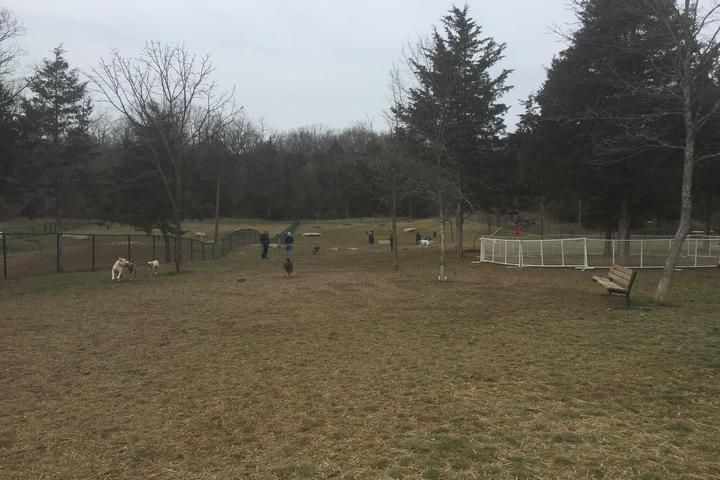 Pet Friendly Dog Park