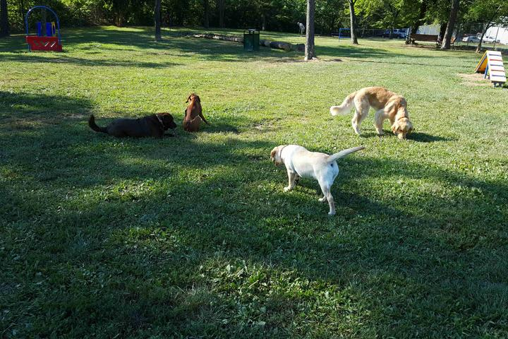 Pet Friendly Winchester Dog Park at Jim Barnett Park