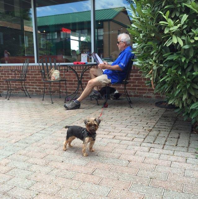 Hotels In Franklin Nc Pet Friendly