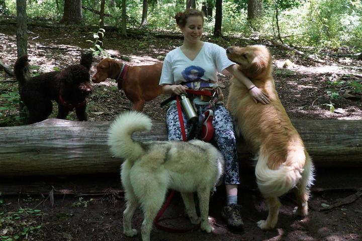 Pet Friendly Hike Your Tail Off