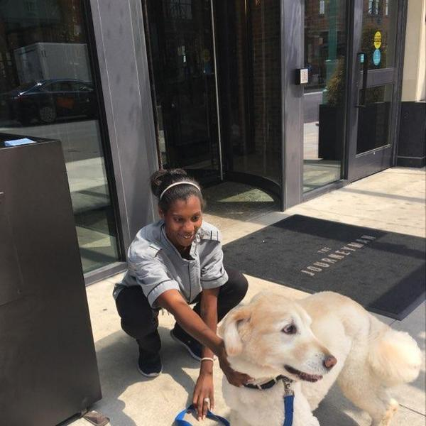Dog Friendly Stores In Milwaukee