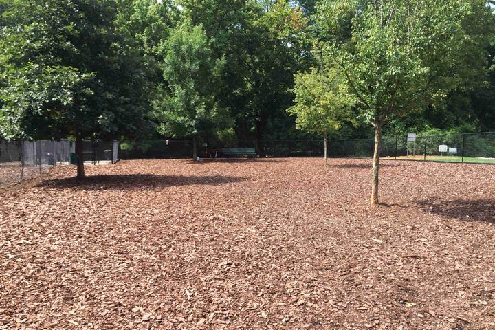Pet Friendly Mason Mill Dog Park