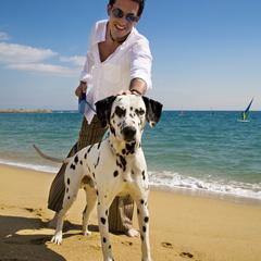 Dog Friendly Beach in Beirut
