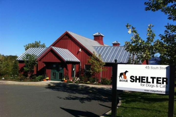 Pet Friendly ROAR - Ridgefield Operation for Animal Rescue