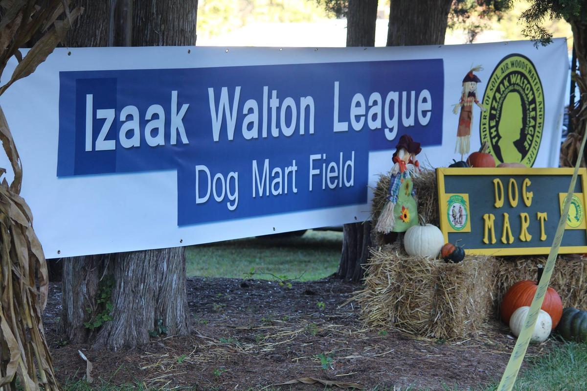 Entrance-way to Dog Mart