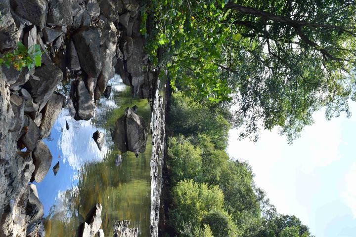 Pet Friendly Shallow Ford Natural Area