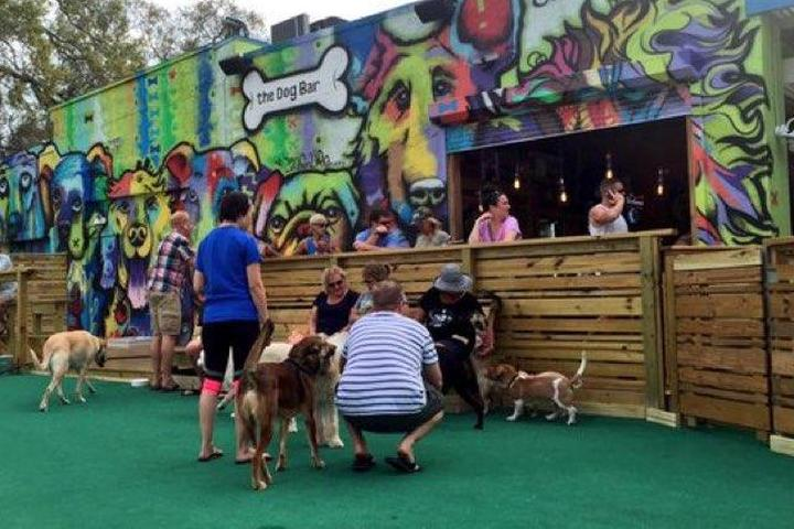 Pet Friendly The Dog Bar