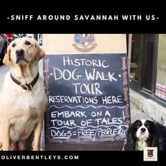 Oliver Bentleys Historic Dog Walk Tour- Savannah - MAIN IMAGE by CHALKBOARD