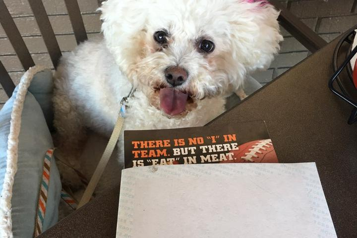 Pet Friendly Hooters