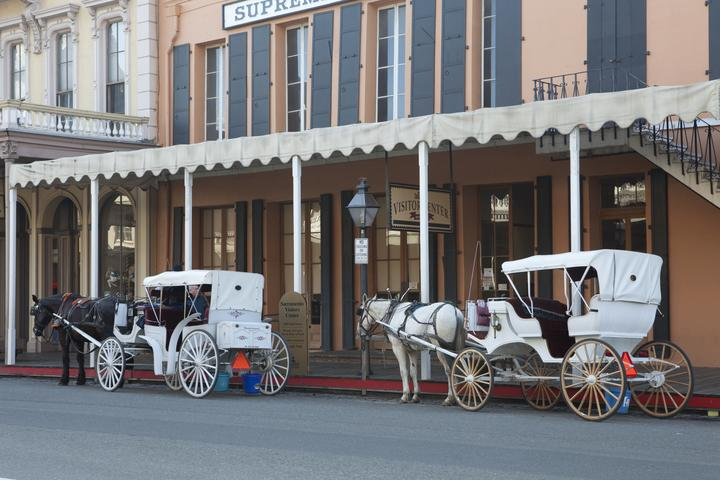 Pet Friendly Carriage Rides In Old Town