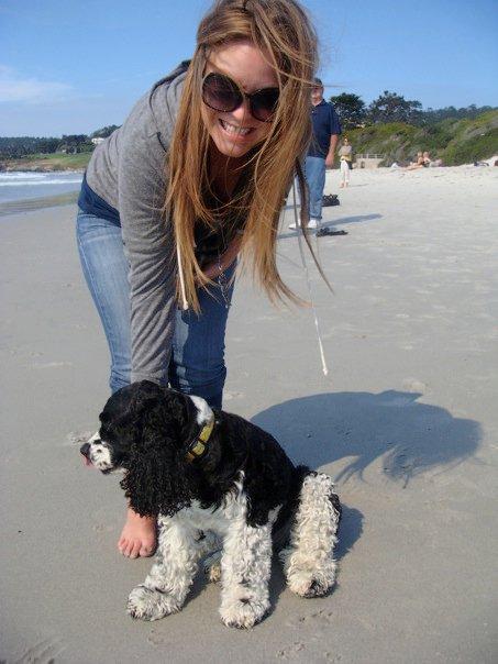 Pup Friendly Beach