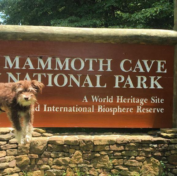 Mammoth Cave National Park Dog Friendly
