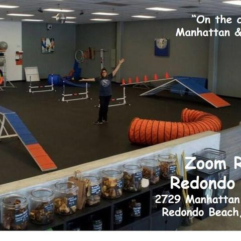 Dog Friendly Redondo Beach Ca Bringfido