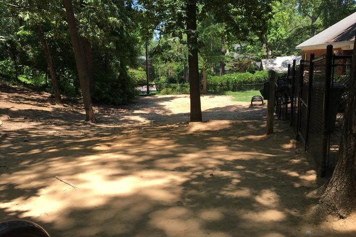 Popular Destinations in South Carolina - Bring Fido