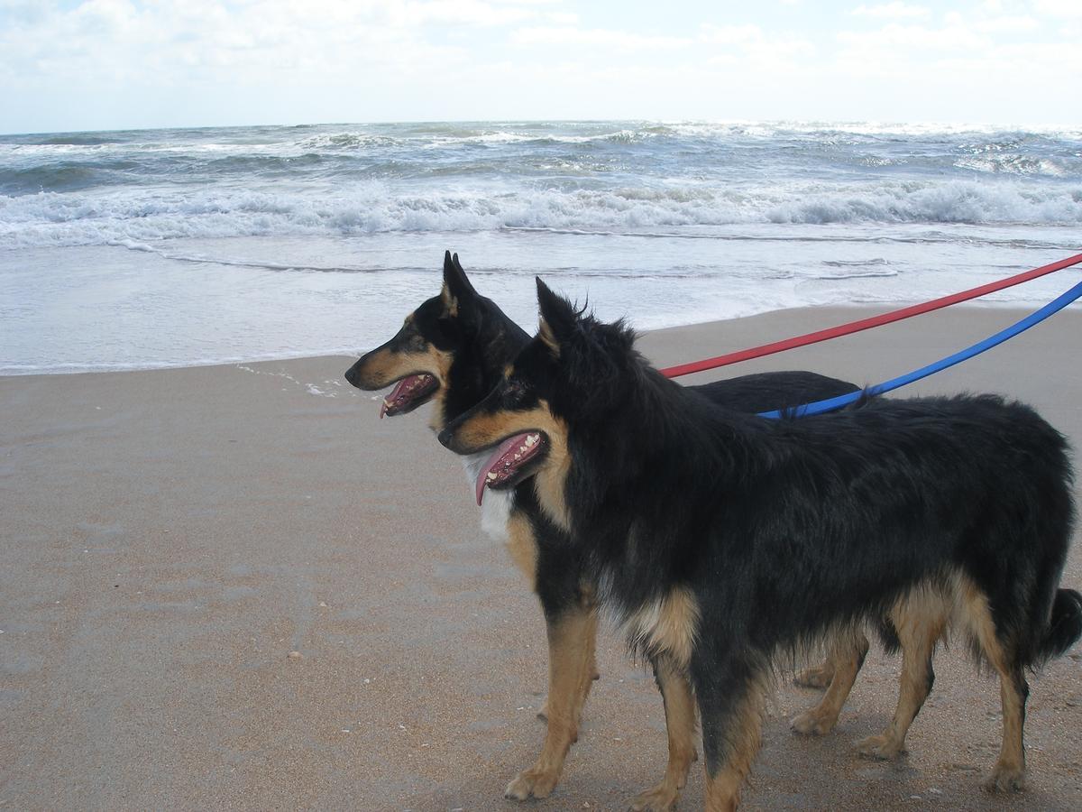 Felix & Lucie @ Vilano Beach