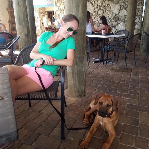 Dog Friendly Restaurant New Smyrna Beach