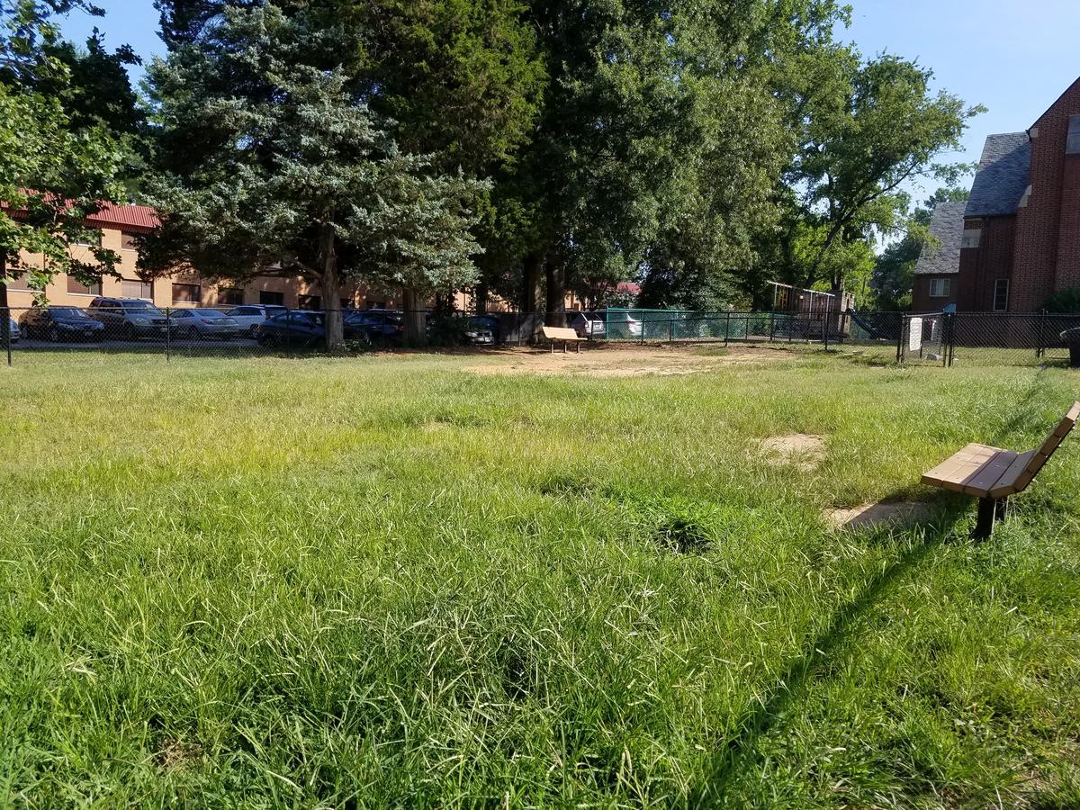 Phideaux field dog park