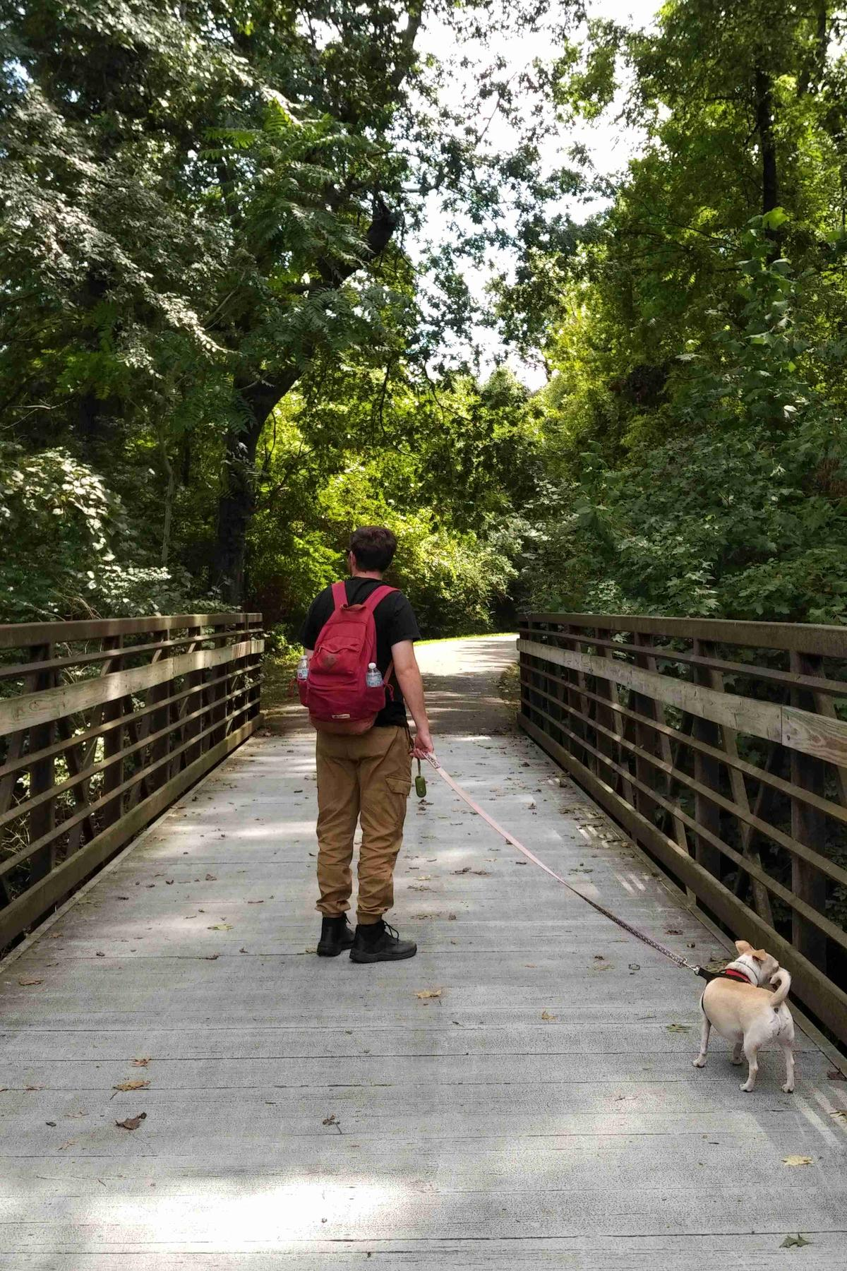 A man and his dog walk across a bridge at Shelby Bottoms Greenway in dog-friendly Nashville.