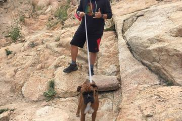 Pet Friendly Lilly Mountain Hike