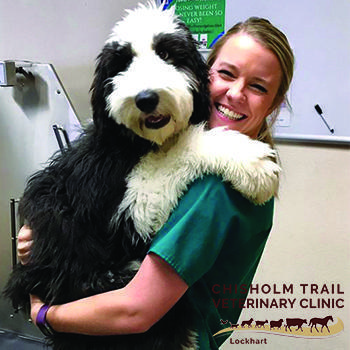 Pet Friendly Chisholm Trail Veterinary Clinic of Lockhart
