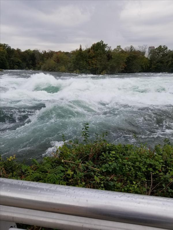 Dog Park Niagara Falls Ny