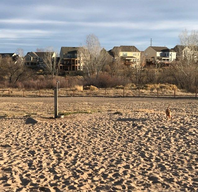 Dog Friendly Highlands Ranch, CO