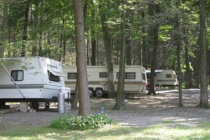 Pet Friendly Shady Brook Campground & Boat Rental, LLC