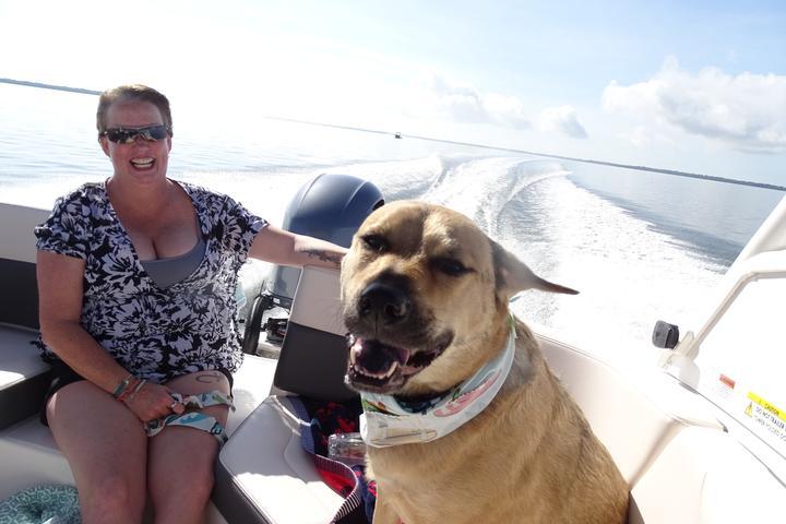 Pet Friendly Beach Buddy Tours