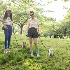 Two Women in the Park with Small Dogs