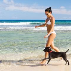 Woman Runs with Dog on a Beach