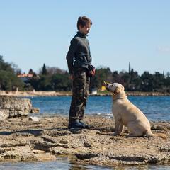 Teenage boy and his dog on the beach