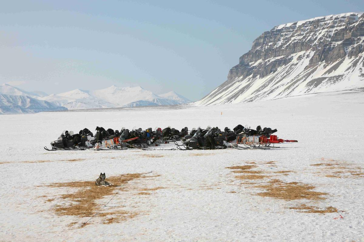 Snowmobile safari with dog on Svalbard, Norway