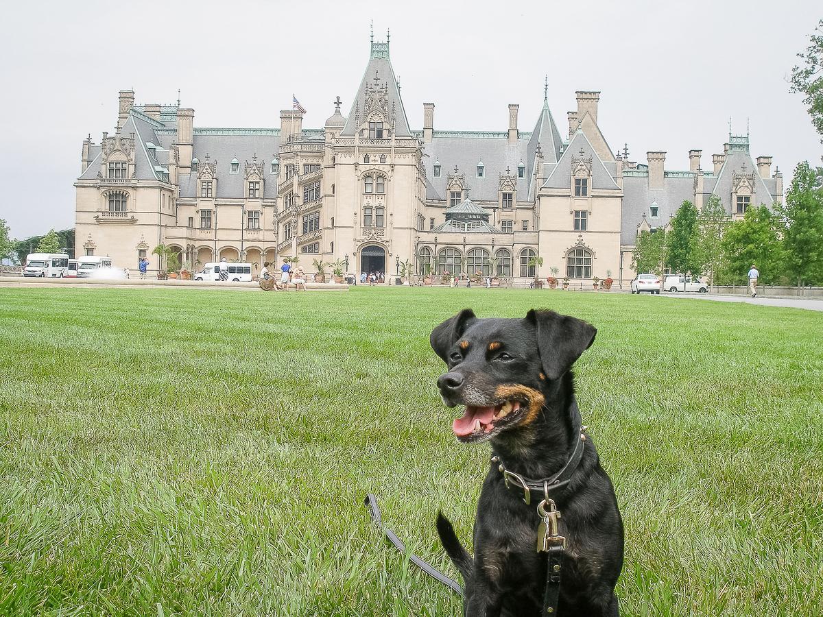 Rocco Enjoys Biltmore Estate